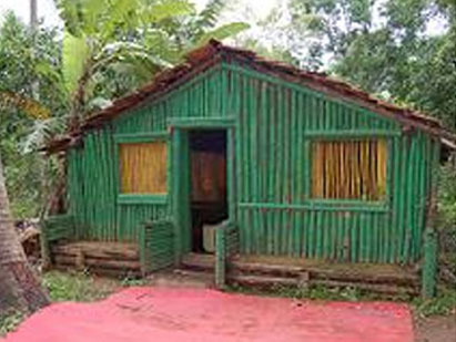 gobral-tiger-camp