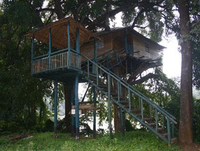 hornbill-river-resort
